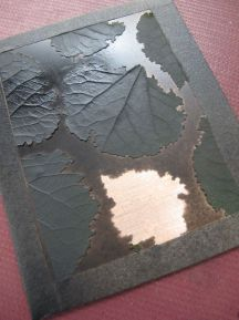 Poplar leaves glued to copper, sprayed with black paint